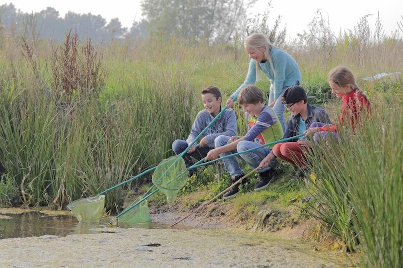 Waterdiertjes zoeken - Visit Hardenberg