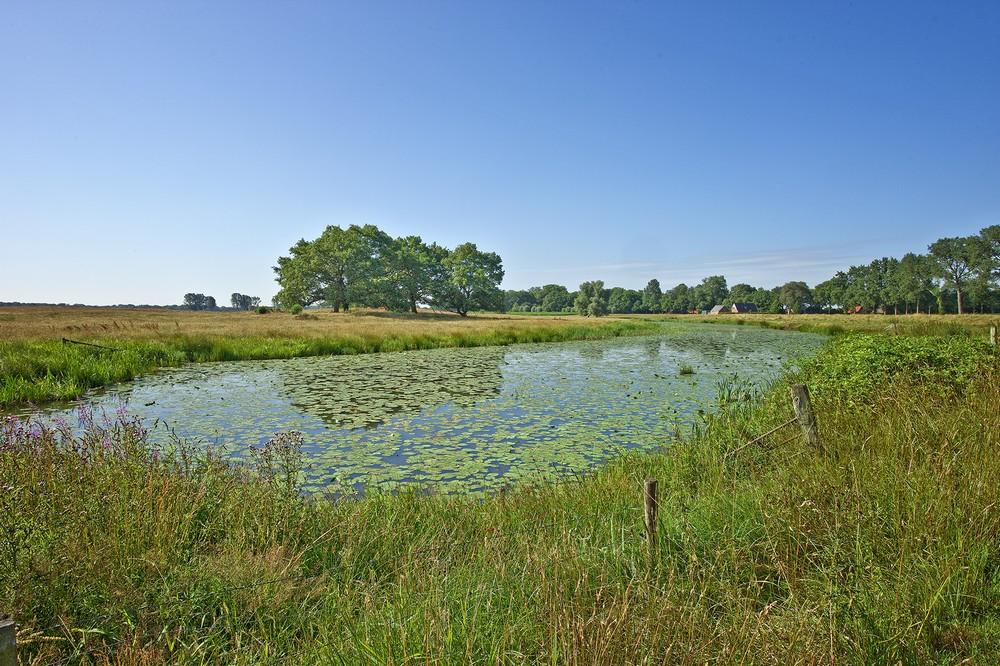 Schöne Natur in der Region Hardenberg
