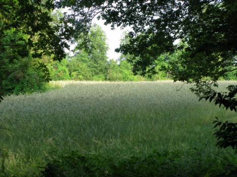 Christelijke campings - Visit Hardenberg